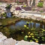 Photo: Home Improvement Project: Koi Pond