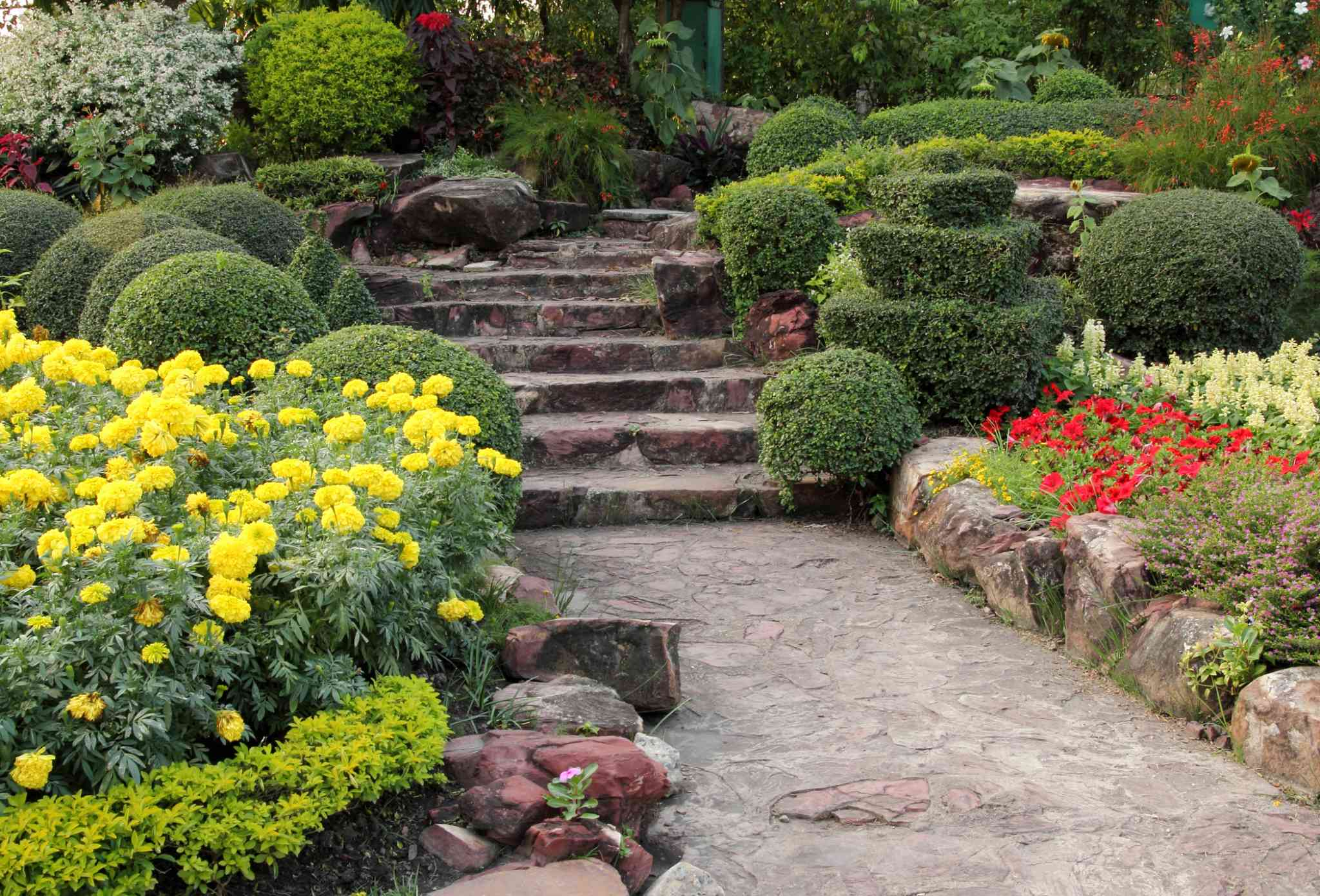 design a scenic walkway sweeping through your garden this summer