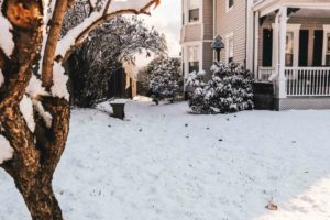 3 Ways to Winterize Your Yard and Gardens